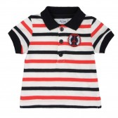 Baby Polo Shirts (7)