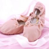 Ballet Shoes (7)