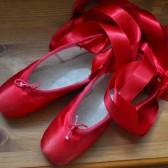 Ballet Shoes (9)