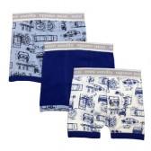 Boxer shorts (6)