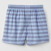 Boxer shorts (9)
