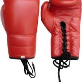 Boxing Gloves (6)