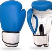 Boxing Gloves (8)