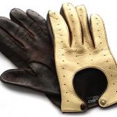 Driver gloves (9)