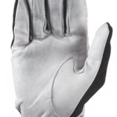 Winter gloves  (1)